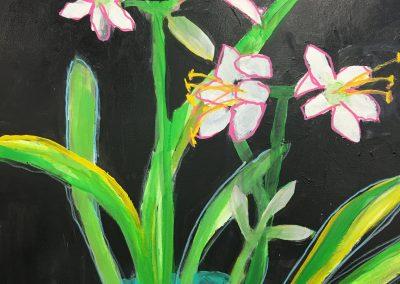 Picotee Amaryllis 24x24 Acrylic on Canvas